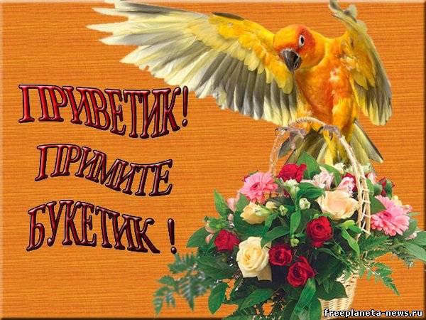 21 ноября международный день приветствий: